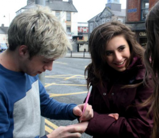 one direction, 1d, 1d mullingar 26.03.13, niall horan, fans