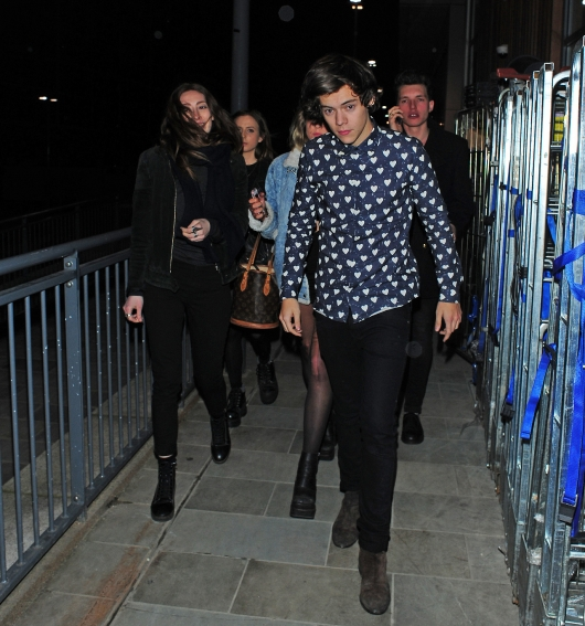 one direction,1d,1d 01.02.13,harry styles,19th birthday party,friends