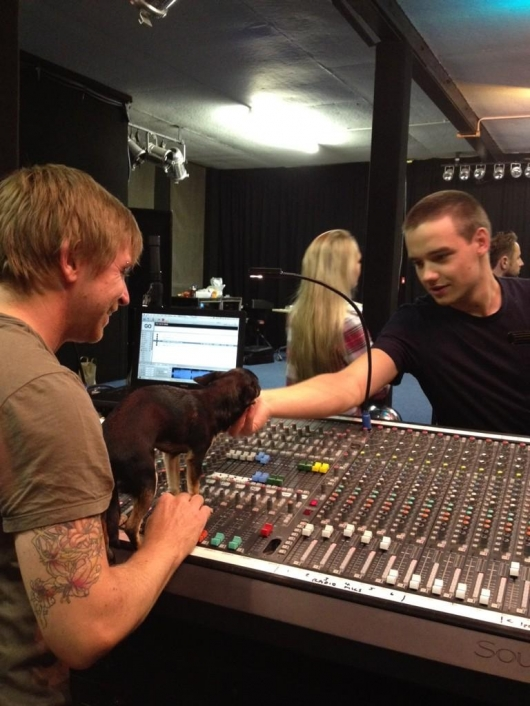 one direction,1d,1d 19.11.12,royal albert hall,liam payne,puppy,cagnolino