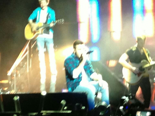 one direction, 1d, 1d london o2 24.02.13, take me home tour, liam payne, niall horan