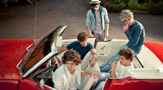 one direction,1d,harry styles,liam payne,louis tomlinson,niall horan,zayn malik,take me home photoshoot