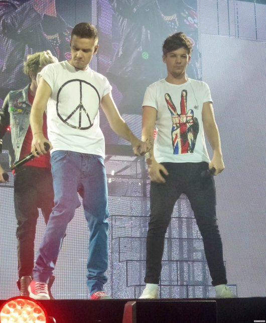 one direction, 1d, 1d london o2 24.02.13, take me home tour, liam payne, louis tomlinson, niall horan