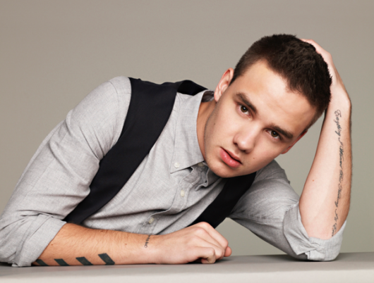 one direction, 1d, anan magazine, photoshoot, japan, liam payne