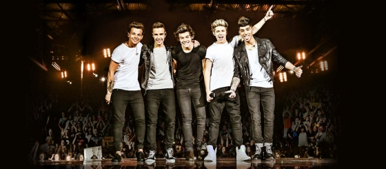 one direction, 1d, where we are tour 2014, harry styles, liam payne, louis tomlinson, niall horan, zayn malik
