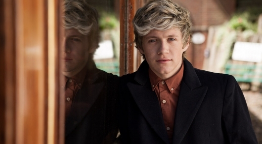 one direction,1d,niall horan,take me home photoshoot
