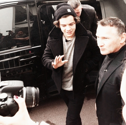 one direction,1d, 1d cannes 26.01.13, harry styles