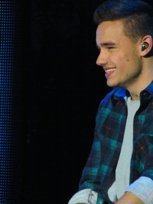 one direction,1d,1d london o2 24.02.13,take me home tour,liam payne